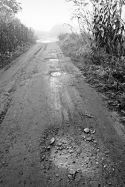 Rutted Road